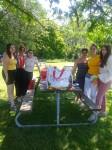picnic 1